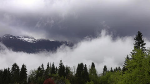 Mountain landscape with trees in fog and clouds Footage