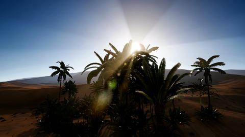 4k amazing Erg chebbi dunes in the sahara desert, morocco Footage