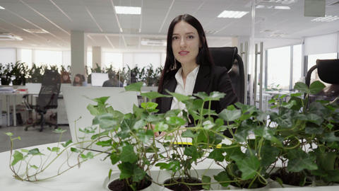 business woman sitting at a desk Footage