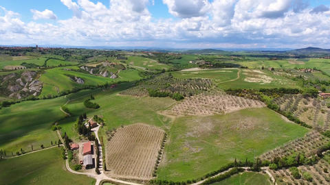Tuscany aerial landscape with olive trees, Italy Footage