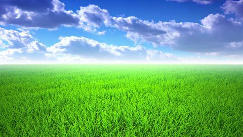 Flight over grass, cloudscape Footage