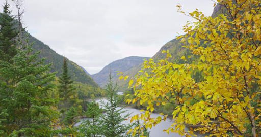 Autumn mountain nature - scenic fall nature landscape in Quebec Canada Filmmaterial