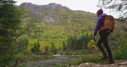 Autumn hiking woman in forest on hike in fall mountain landscape looking at view Live Action