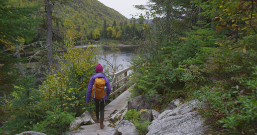 Hiking woman hiker in Autumn forest on hike in Fall mountain landscape Live Action