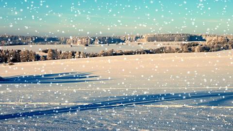 Winter snowy landscape Stock Video Footage
