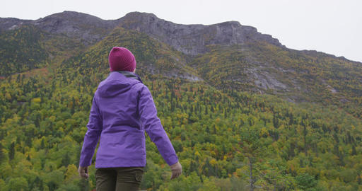 Happiness in nature - woman raising arms feeling free and happy on autumn hike Footage