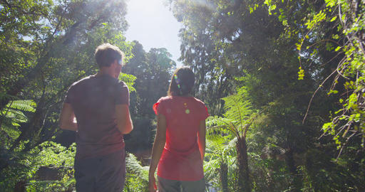 Couple in New Zealand hiking in swamp forest taking pictures in Ship Creek Footage