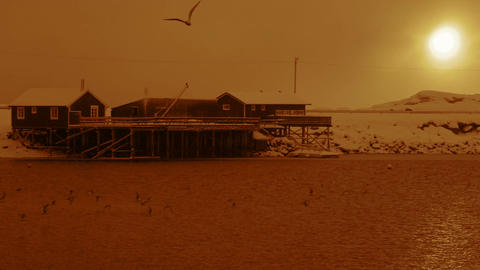 Winter Evening Pier and Seagulls. Slow Motion Filmmaterial