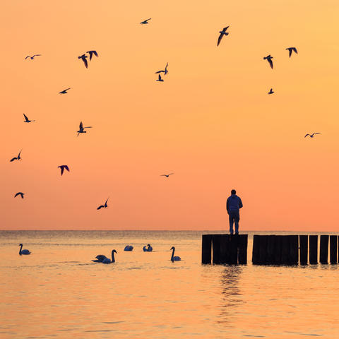silhouette of a man standing on a breakwater against the sky at sunrise Photo