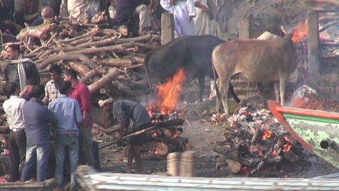 Manikarnika Ghat, main burning ghat, most auspicious place Hindu to be cremated Footage