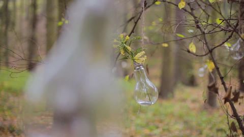 Eco forest wedding light bulb with flower Live Action