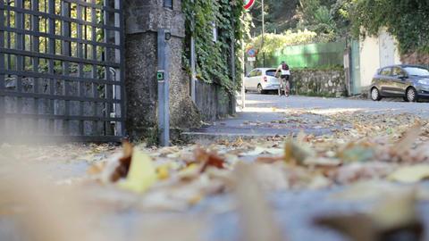 Autumn leaves on the street Footage