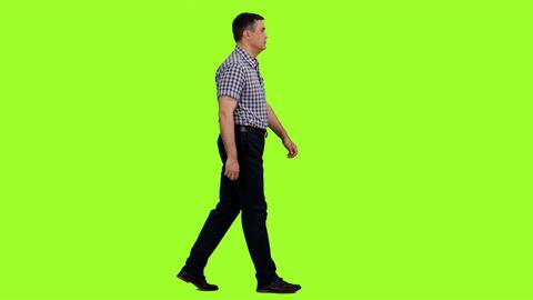 An elegant man in a plaid shirt walks on green screen background, Chroma key Footage