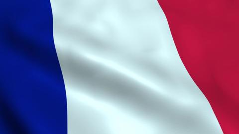 Realistic France flag Animation