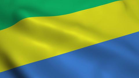 Realistic Gabon flag Animation