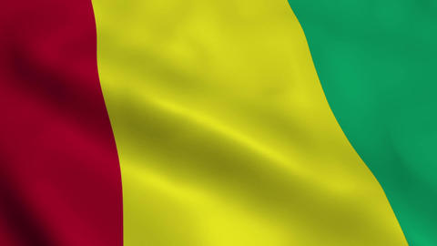 Realistic Guinea flag Animation