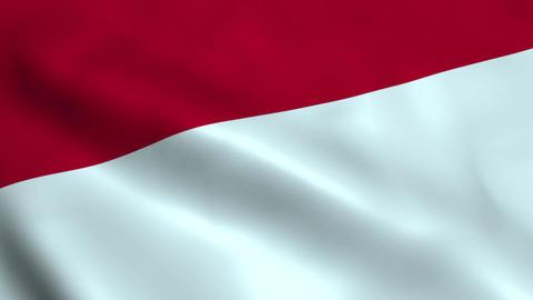 Realistic Indonesia flag Animation