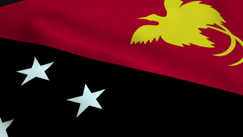 Realistic Papua New Guinea flag Animation