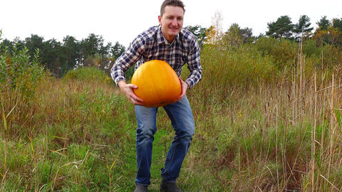 Rustic man pick up ripe pumpkin and walk away by path through rural weedy field Live Action