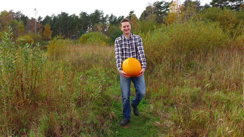 Cheerful man funny carry large ripe pumpkin, walk towards by rural field path Live Action