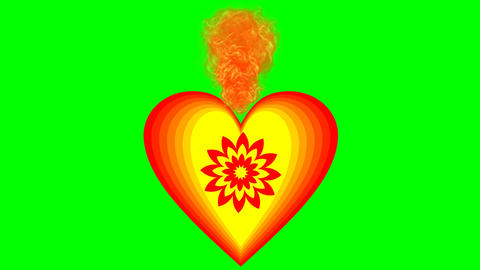 Burning heart on green screen. Animation of love symbol in cheerful vivid colors Animation
