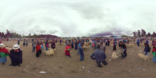 360Vr Ecuadorian Indigenous Trading Sheep On A Saturday Morning Footage