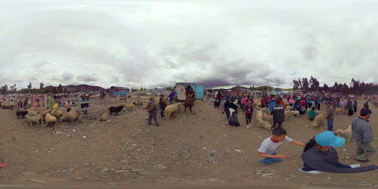 360Vr Ecuadorian Farmers Trading Sheep At An Animal Market In Riobamba Footage