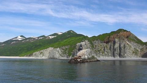 Sea lions. Sea Safari journey along the Kamchatka Peninsula. Russia Footage