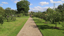 Apple trees University of Oxford Botanic Garden Oxford UK Footage
