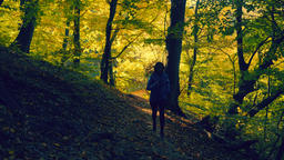 Young woman in blue jacket running on trail in autumn colored forest Footage