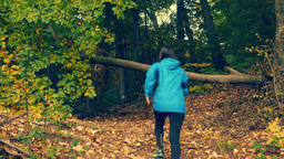 Woman in blue running jacket training in autumn covered forest. Running under Footage
