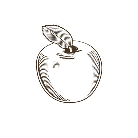 Apple in vintage style フォト