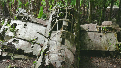 Zero Fighter Combat Japanese Military Airplane Plane Aircraft Wreck Peleliu stock footage