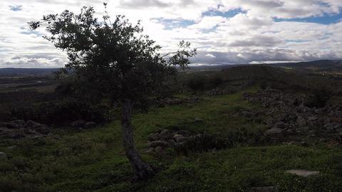 Drone Marialva 2.7K stock footage