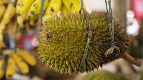 Durian fruit in the market Footage