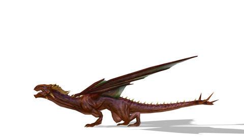 UHD-Dragon 動画素材, ムービー映像素材