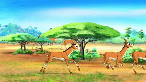Herd of antelopes runs through the savannah Animation