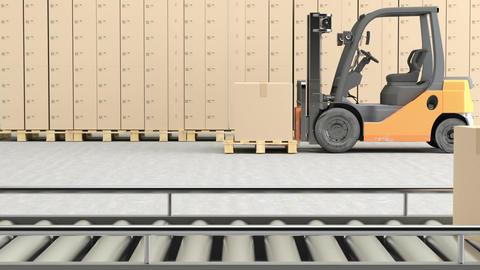 Cardboard boxes on conveyor belt with Forklift Footage