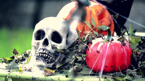 Skeleton Head with Halloween Pumpkins Filmmaterial