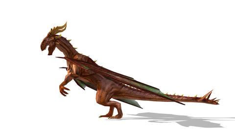 FHD-Dragon CG動画素材