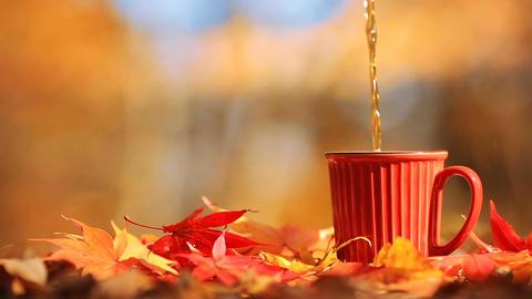 Tea mug and autumn multi colored foliage Filmmaterial