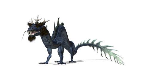 FHD-Dragon Animation