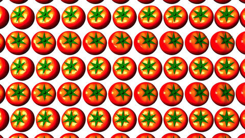 Tomatoes On White Background CG動画素材