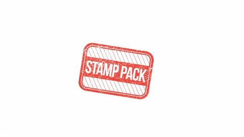 Visa & Simple Stamps Premiere Pro Template