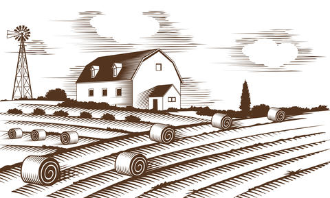 Farm landscape. Engraved Illustration Fotografía