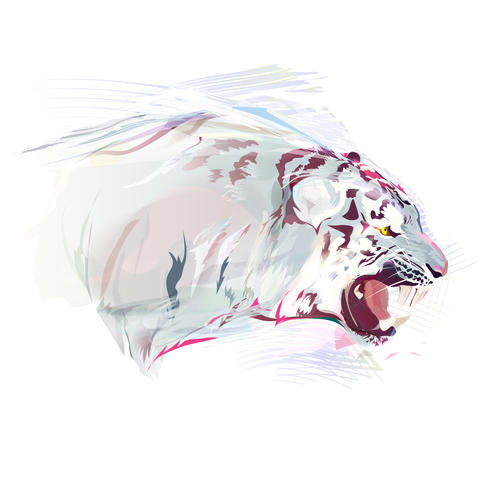 White Tiger, Watercolor Illustration Foto