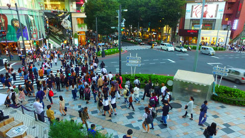 Jingumae crossing in Tokyo Japan from above at evening ライブ動画