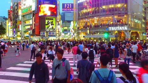 Tracking shot of scramble crossing in Shibuya Tokyo Japan at dusk ライブ動画