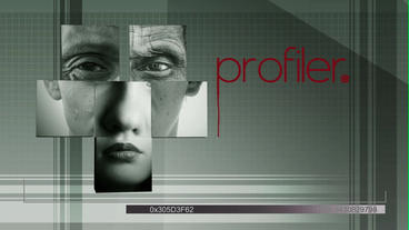 Profiler After Effects Project