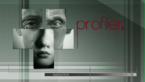 Profiler After Effects Template